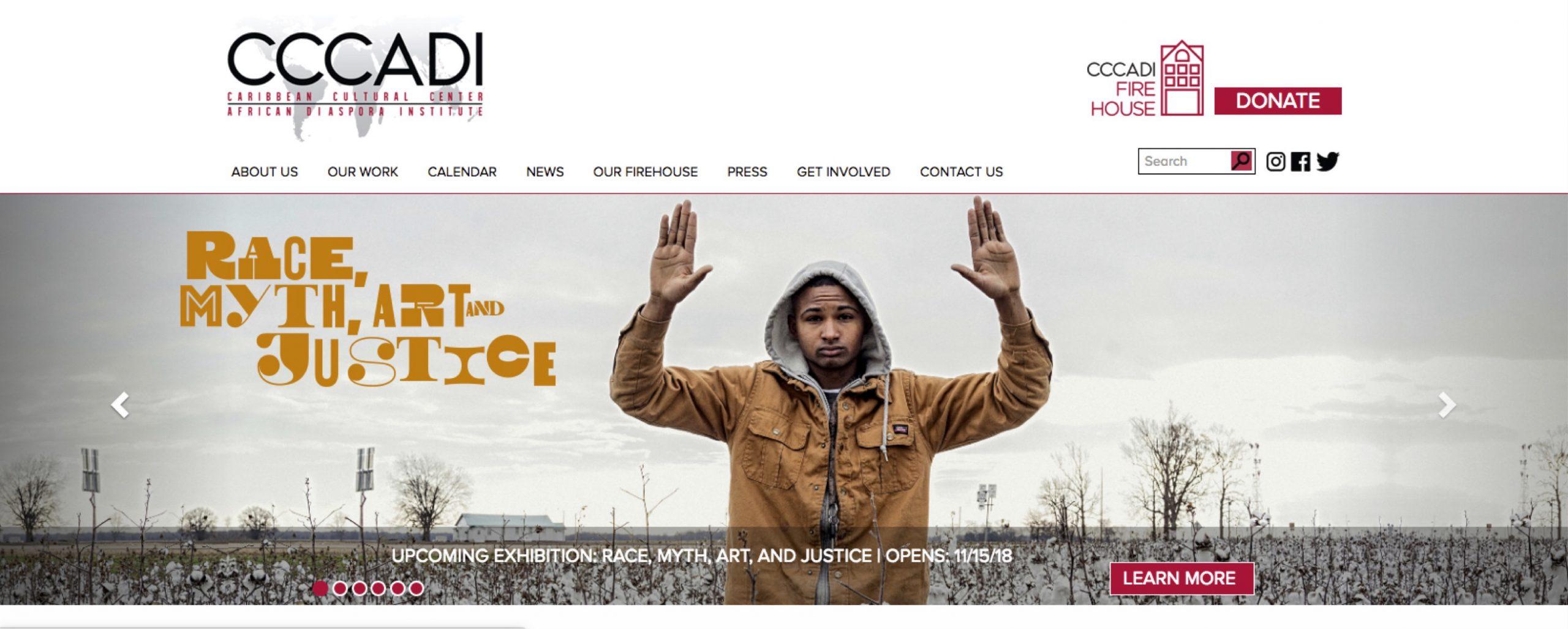 00B_ CCCADI website